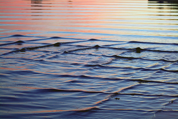 Ripples, Madaket Nantucket