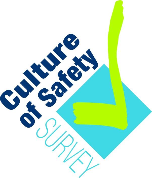 Cultrue of Safety_2